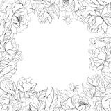 Frame of Peony. Royalty Free Stock Images