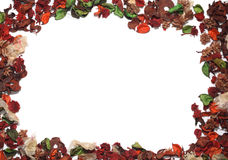 Frame of petals. Frame with petals of dried flowers Stock Photos