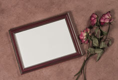 frame for photo and dry roses Stock Photo