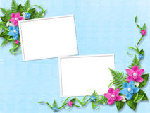 Frame for photo with orchids. Frame for photo with blue and pink orchids Royalty Free Stock Photos
