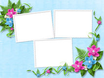 Frame for photo orchids. Frame for photo with blue and pink orchids Royalty Free Stock Photos