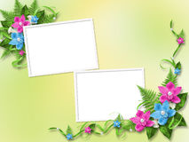 Frame for photo with  pink orchids. Frame for photo with blue and pink orchids Royalty Free Stock Photo
