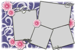 Frame for photos Royalty Free Stock Photo