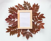 Frame for photos in autumn leaves  on white background. Top view, flat lay. Copyspace. Mockup. Royalty Free Stock Photo
