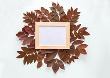Frame for photos in autumn leaves  on white background. Top view, flat lay. Copyspace. Mockup. Royalty Free Stock Images