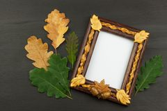 Frame for photos with oak leaves on a wooden background. Wish on a postcard. Stock Photo