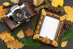 Frame for photos with oak leaves on a wooden background. Wish on a postcard. Royalty Free Stock Image