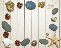 Frame photos of seashells Royalty Free Stock Photos