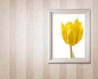 Frame with picture Royalty Free Stock Photos
