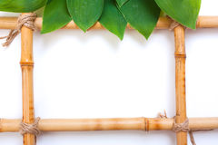 Frame for pictures from bamboo Stock Photo