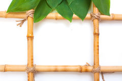 Frame for pictures from bamboo Stock Image