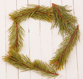 Frame from the pine branches on a white wooden background. Frame from the pine branches Stock Image