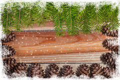 Frame of pine cones with with  firtree Royalty Free Stock Photography