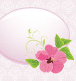 Frame with pink flower Royalty Free Stock Photography