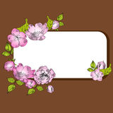 Frame with pink flowers Royalty Free Stock Photography
