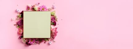 Frame of pink flowers over punchy pastel background. Valentines day, Woman day concept. Spring or summer banner with copy space.  royalty free stock images