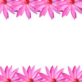 Frame pink lotus isolated on white background. Frame pink lotus isolated on white background for design in concept of nature Stock Photos