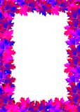 Frame of pink maple leaf Stock Photos