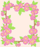 Frame with pink peach flowers Royalty Free Stock Images