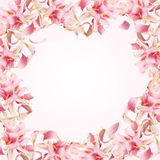 Frame of pink petals