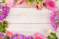 Frame of pink and purple flowers against white wood. Frame of pink and purple flowers with rose, carnations, lilies and daisies against a white wood background Stock Images