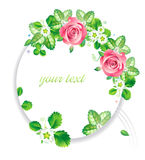 Frame_pink_rose_flower Image stock