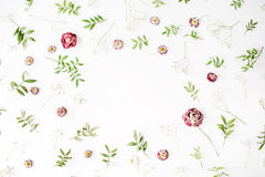 Frame with pink roses, branches, leaves and petals  on white background Royalty Free Stock Photo