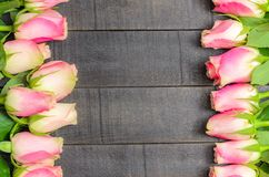 Frame of pink roses on dark wooden background stock photography