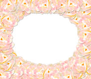 Frame from pink tender tulips Stock Image