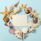 Frame of Plenty different seashells on a blue background. Seaside themed backdrop for travel agency template advertising Royalty Free Stock Image