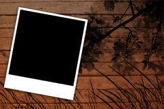 Frame polaroid black and white wood and trees Royalty Free Stock Photo