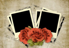 Frame Polaroid  on vintage background. Vintage   background with frame Polaroid and roses  for congratulations and invitations Royalty Free Stock Photography