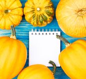 Frame from pumpkins around sheet of notepad on blue wooden textured background, top view, flat lay. Pumpkins create a frame around white sheet of paper of royalty free stock photography