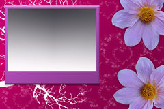 Frame purple with flower. Frame for card or photography for send yout partner Royalty Free Stock Photos