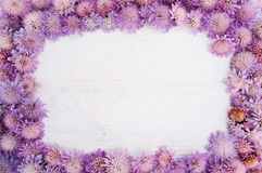 Frame of purple flowers on white, copyspace Stock Photography