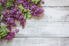 Frame of purple lilac flowers with space for text on white vintage wooden board. Top view stock photo
