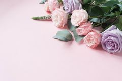 Frame of purple and pink roses, white Lisianthus and different flowers on pink background. Flat lay, top view stock image