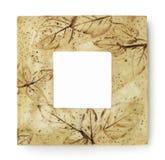 Frame quadrado Fotografia de Stock Royalty Free