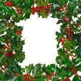 Frame quadrado do azevinho isolado Imagens de Stock