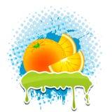 Frame quatro do vetor do grunge das laranjas seu texto Foto de Stock