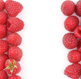 Frame of Raspberries Royalty Free Stock Photo