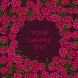 Frame of raspberries Royalty Free Stock Photography