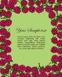 Frame of raspberries Stock Photography