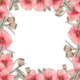 Watercolor frame with poppies on a white background royalty free illustration