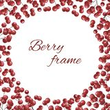 Frame with red berries. Watercolor illustration for the design of books, cards, invitations