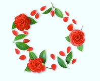 Frame of red Camellia flowers, leaves and red petals on light cy Royalty Free Stock Photos