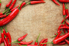 Frame of red chilli peppers - Series 2 Stock Photography
