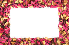 Frame of red flower petals on white. Frame of red flower petals on a white background stock image