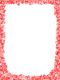 Frame red flowers Stock Images