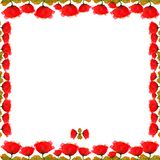 Frame of bright red flowers floral garden ornament decoration framed painted watercolor isolated on white background. Frame of red flowers floral garden ornament Stock Image